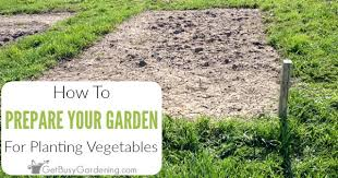 a garden bed for planting vegetables