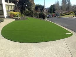 artificial turf yard. Front Yard With Artificial Turf