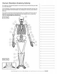 Small Picture Brain Anatomy Coloring Pages Gallery Of Human Brain Coloring Page