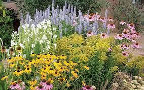 professional looking garden design