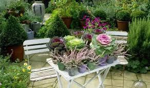 Container Garden Design Ideas Uk  The Garden InspirationsContainer Garden Ideas Uk