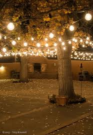 patio string lighting ideas. A Perfect Canopy Of String Lights. Shop For Custom Length Cords Online At Http: Patio Lighting Ideas I