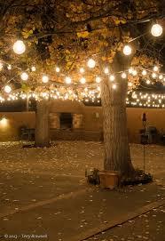 creating an outdoor lighting plan home garden