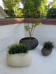 contemporary pots pinned to garden design  pots  planters by