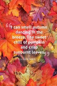 Autumn Quotes Fascinating 48 Beautiful Fall Quotes Best Sayings About Autumn