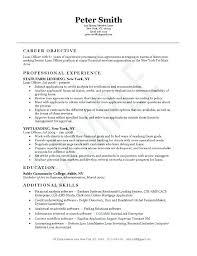 Sample Resume For Credit Manager Loan Officer Resume Example Sample