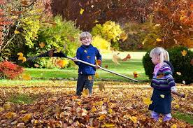 Top 10 Dos And Donu0027ts For Fall Gardening  Off The Grid NewsFall Gardening