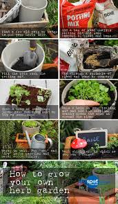 how to grow a herb garden. Grow A Herb Garden Step By How To