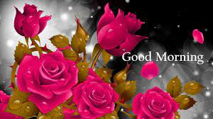 Good Morning Ke Wallpaper Download Video