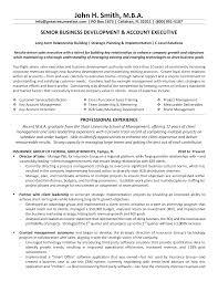 Cv Account Account Executive Cv Templates At Allbusinesstemplates Com