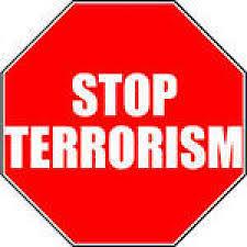 Терроризм как угроза национальной безопасности Российской  Терроризм как угроза национальной безопасности Российской Федерации Политическое образование