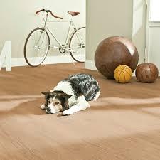 Haustiere kaufen und verkaufen mit gratis anzeigen. Corklife Watercork Komfortable Bodenbelage