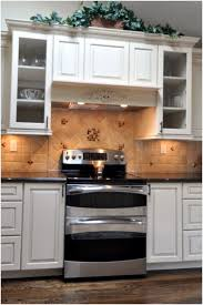 Kitchen Lighting Options Best Of Under Counter Lights The Option Cabinet