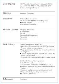 College Student Resume Resume Example