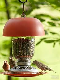 how to keep birds away from garden. Bird Feeder How To Keep Birds Away From Garden D