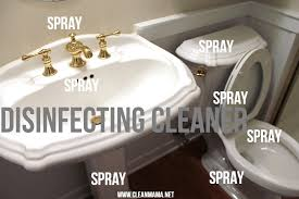 step two spray sink and tubs and toilet with disinfecting cleaner