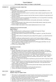 Customer Success Manager Resume Success Manager Resume Samples Velvet Jobs 3