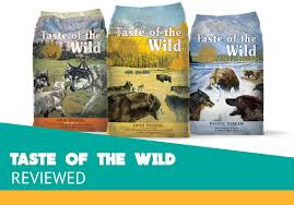 Taste Of The Wild Dog Food Review Dry Our Honest Review