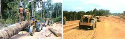 Современные экологические проблемы Южной Америки Изменение  Рис 124 Прокладывание Трансамазонской автомагистрали