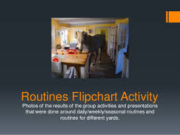 Number Of The Week Flip Chart Daily Weekly And Seasonal Equine Routines Flip Chart