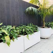 plant pots sydney perth