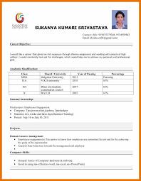 11 Resume Model Format Budget Reporting