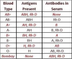 Blood Group Chart Paternity Blood Type Dominance Chart Blood