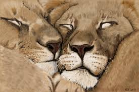 Love Animals Drawing At Getdrawings Com Free For Personal Use Love