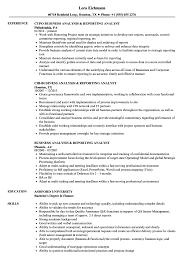 Download Business Analysis & Reporting Analyst Resume Sample as Image file
