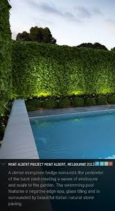 furniturewinsome landscape lighting ideas outdoor. hedge with ficus and dwarf tahitian lime love the uplighting pool design pinterest backyard designs furniturewinsome landscape lighting ideas outdoor