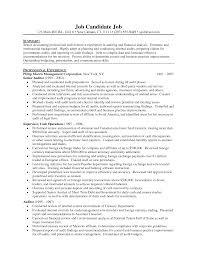 doc sample resume for auditor senior it sample resume now