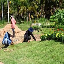 garden maintenance service. Exellent Garden HOUSE GARDEN MAINTENANCE SERVICE Throughout Garden Maintenance Service T