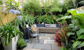 transform your yard into a garden oasis