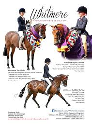 Whitmere Ponies - 2017 Riding Pony Journal advert Thank you to ...