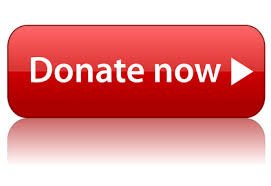 Image result for donate button picture