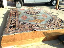 best way to clean area rugs clean area rug appealing how to wool rugs with dog