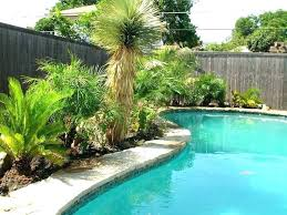 best plants around pool friendly and trees ideas on landscaping worst tropical