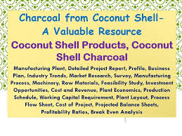 Charcoal From Coconut Shell A Valuable Resource Coconut Shell