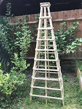 Plant Supports For Climbers In Stock Now  GreenfingerscomClimbing Plant Support