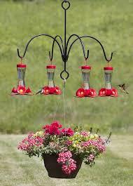 Small Picture 43 best Bird feeders and bird info images on Pinterest Bird