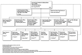 Amc Organization Chart Office Of The Executive Vice President For Medical Affairs