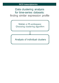 bioinformatics support at school of biological sciences university 8 data clustering analysis for time series datasets finding similar expression profile ngs transcriptomics matlab or r workspace choosing clustering
