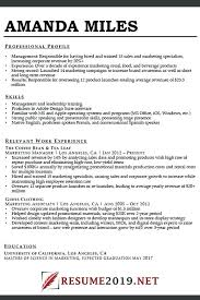 Example Of Combination Resumes Resume Example Of Combination Format Professional Template