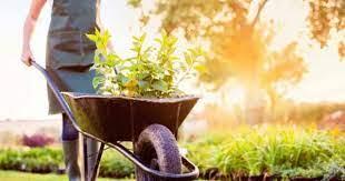 cons of wheelbarrows and garden carts
