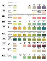 Urine Colour Chart Pregnancy Urine Test Strip Portal Myhealth