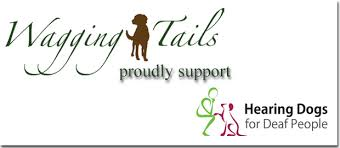 Help Wagging Tails Raise Funds To Support A New Hearing Dogs
