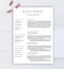 Minimalist resume template, CV template for Word, Two pages resume,  Professional resume, Modern resume, Resume instant download