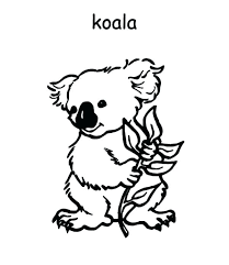 Australian Animals Coloring Pages Free Koala Coloring Pages
