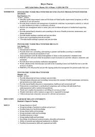Cv Examples Nurse Practitioner Resume Templates Design For Job