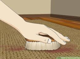 image titled clean a jute rug step 1